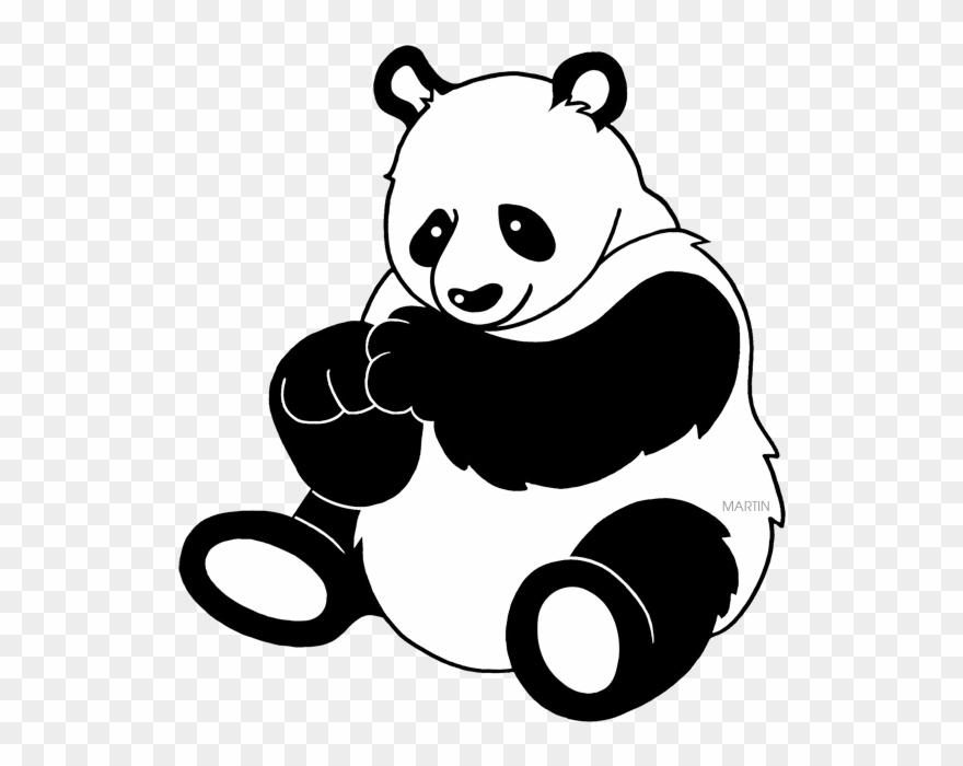 red-panda # 4879210