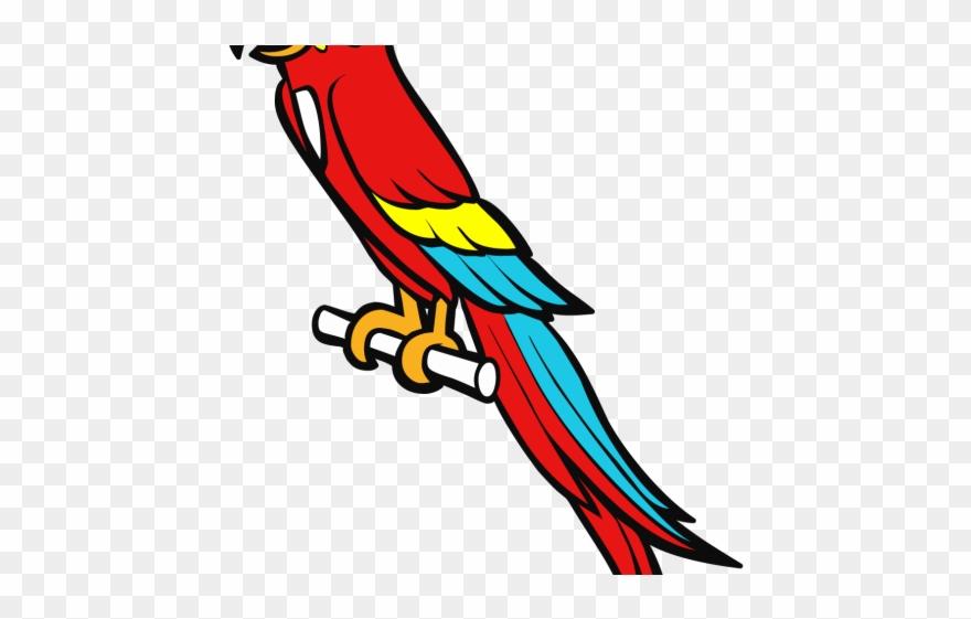 parrot # 4895924