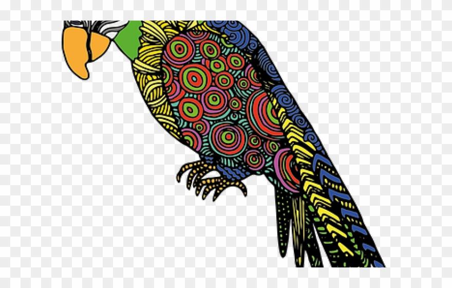 parrot # 4895767