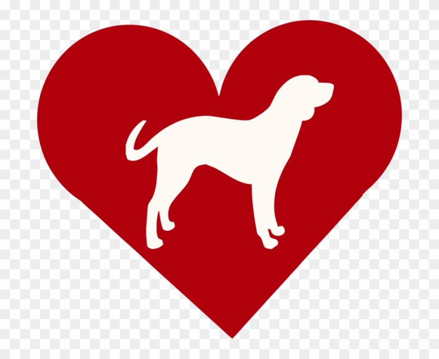 dog-breed # 5301885