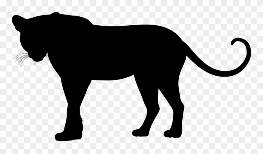 jaguar # 5176737