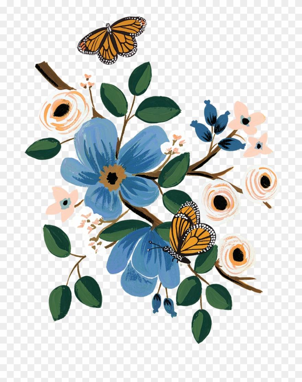 monarch # 5297629