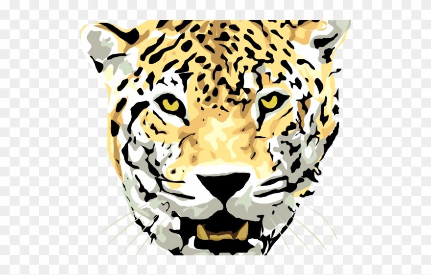 cheetah # 5101636