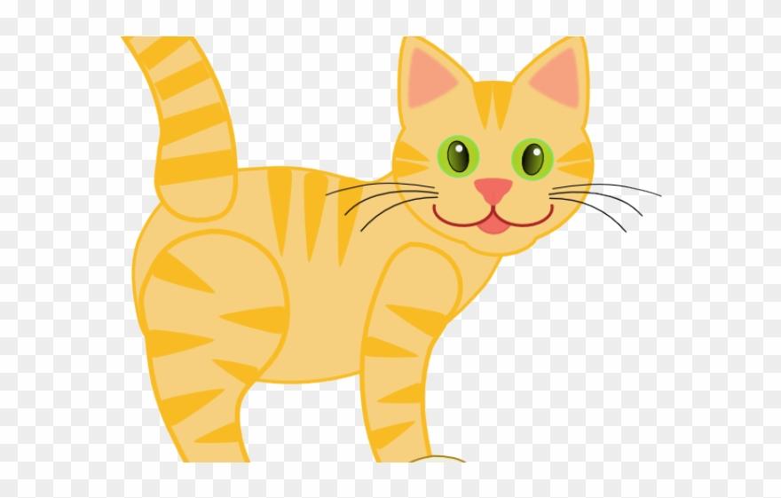 tabby-cat # 5294574