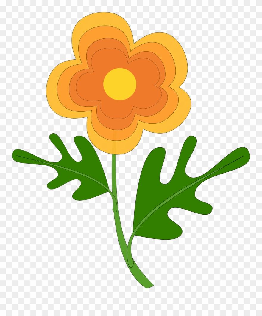 flowering-plant # 5188515