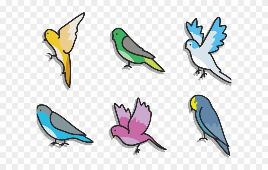 lovebird # 5187791
