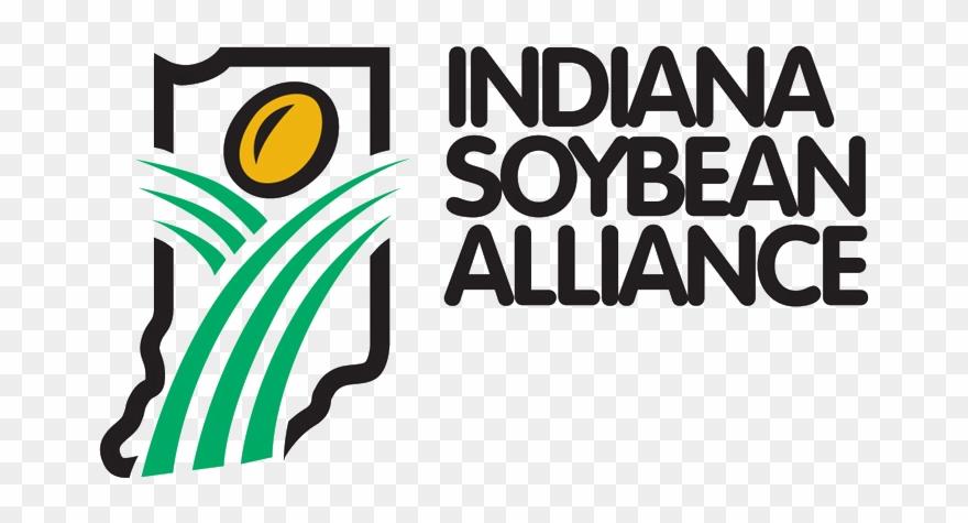 soybean # 5187026