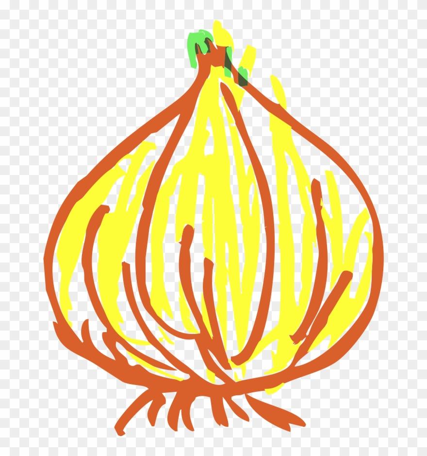 onion # 5120433