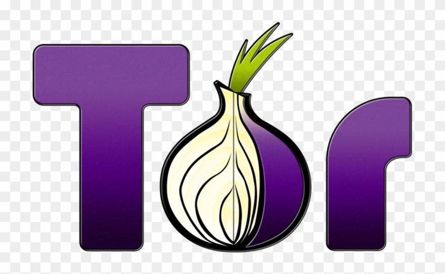 onion # 5117429