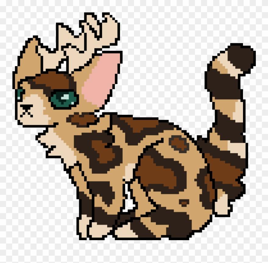 leopard # 5170186
