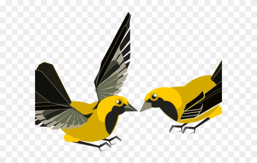 songbird # 5171682