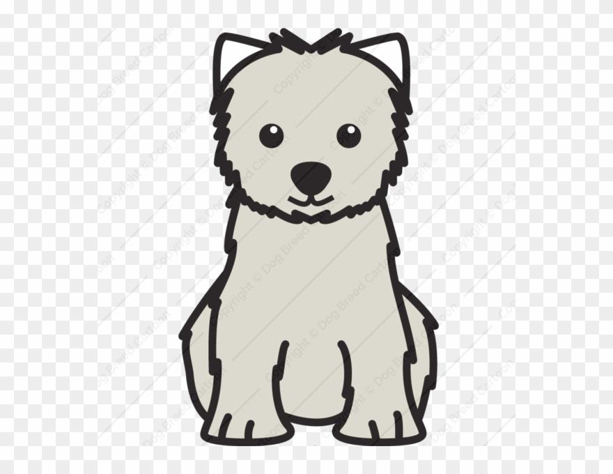 yorkshire-terrier # 5166094