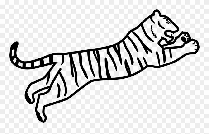 bengal-tiger # 5193832