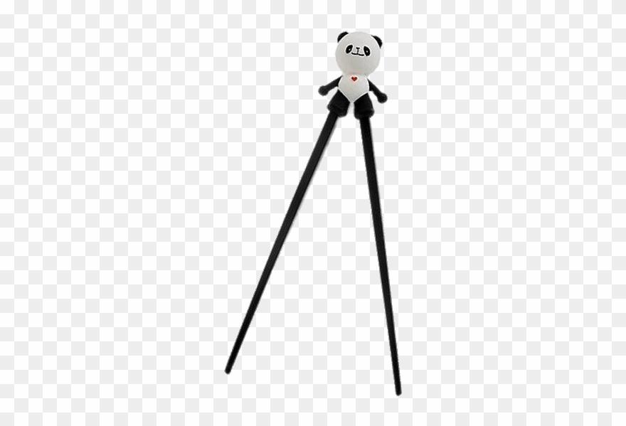 red-panda # 5184684