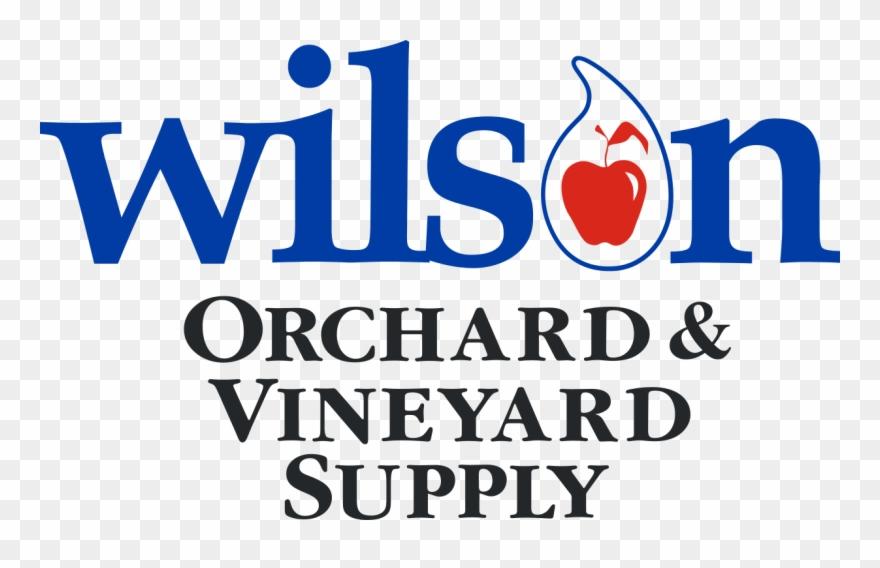 vineyard # 5173207