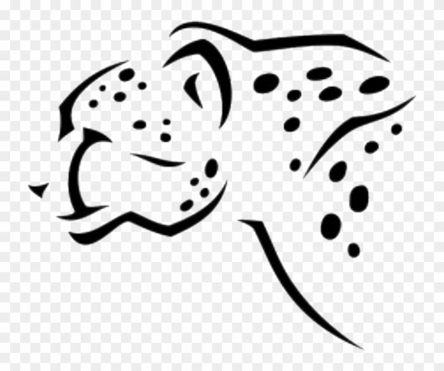 cheetah # 5173447