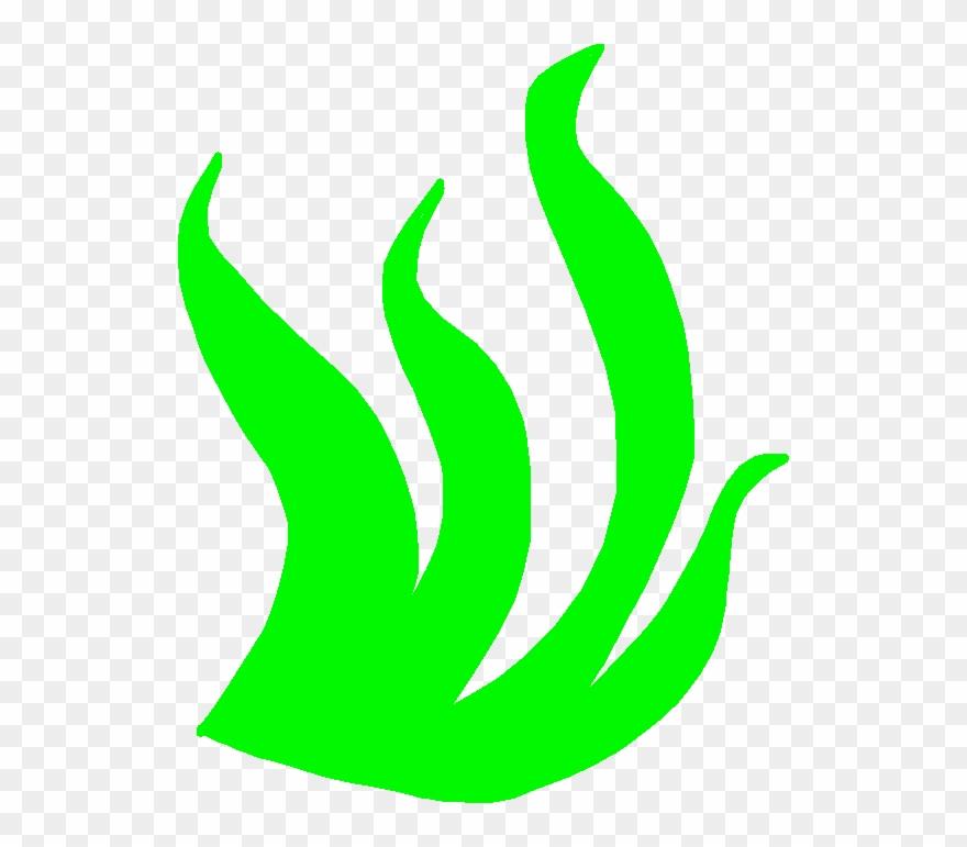 seaweed # 5176050