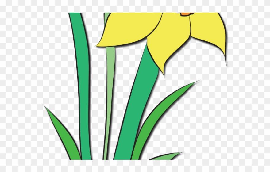 flowering-plant # 5126830
