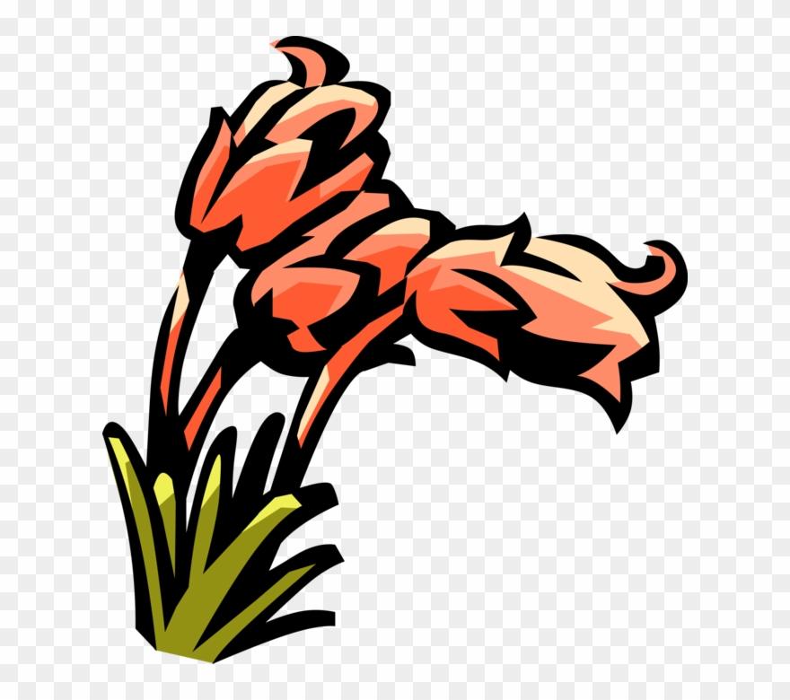 flowering-plant # 5108493