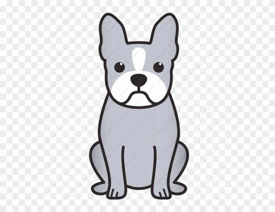 yorkshire-terrier # 5105287