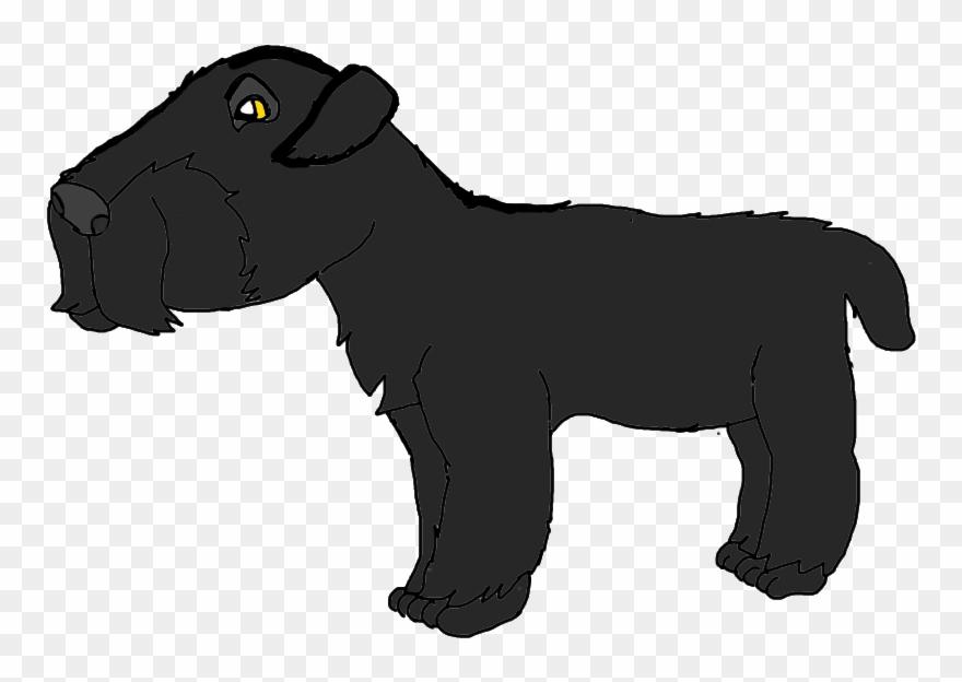yorkshire-terrier # 5105290