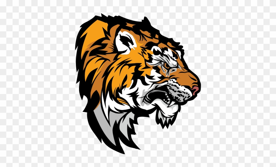 bengal-tiger # 5140964