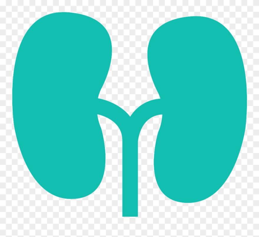 kidney-beans # 5113243