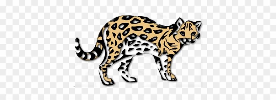 leopard # 5116954