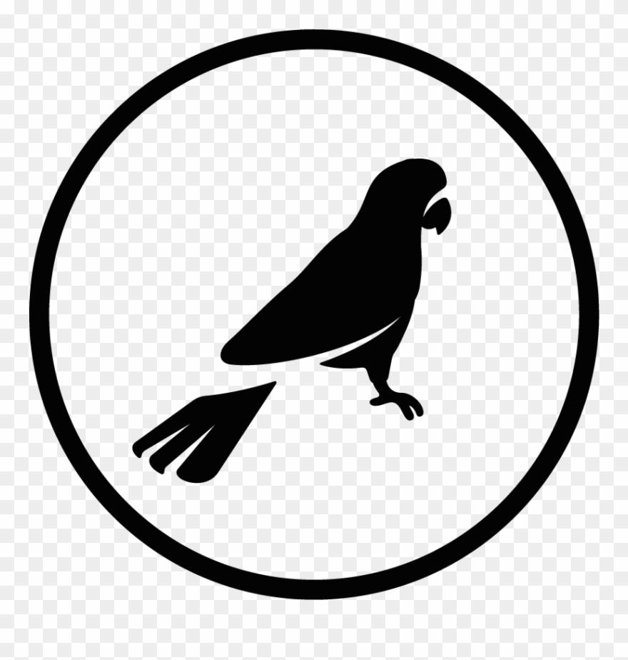 lovebird # 5136117