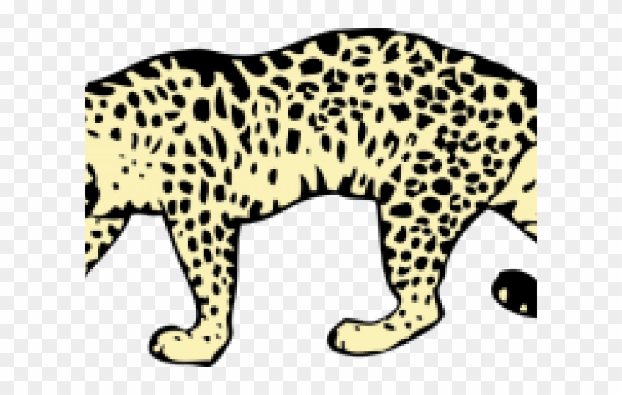 leopard # 5136549