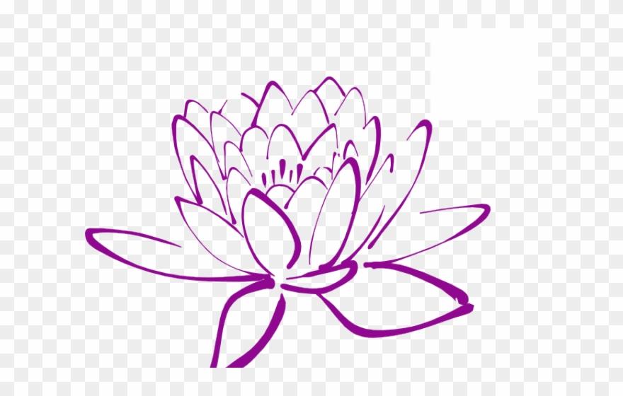 lotus # 5086275