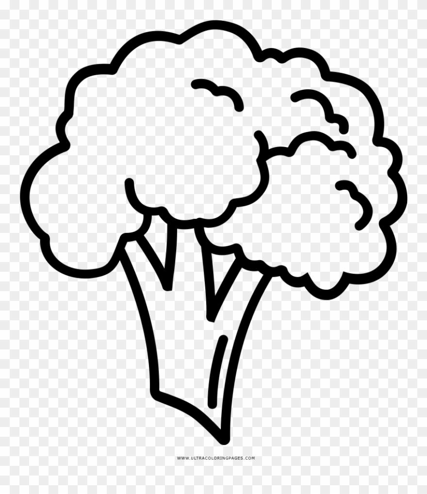 broccoli # 5084425