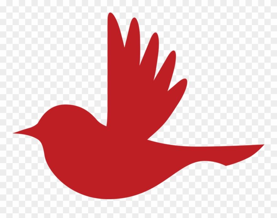 songbird # 5066535