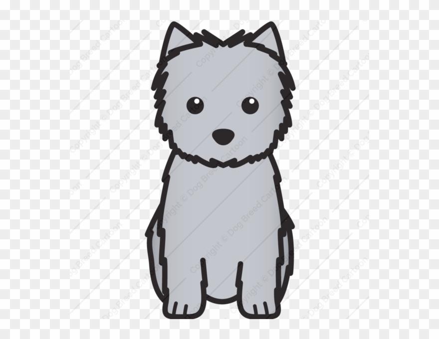 yorkshire-terrier # 5229318