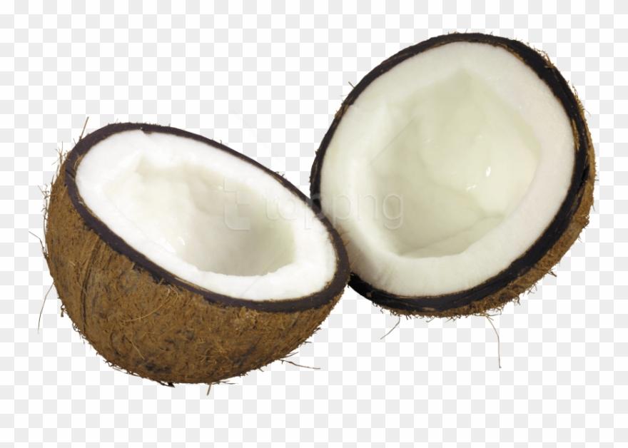 coconut # 5061704