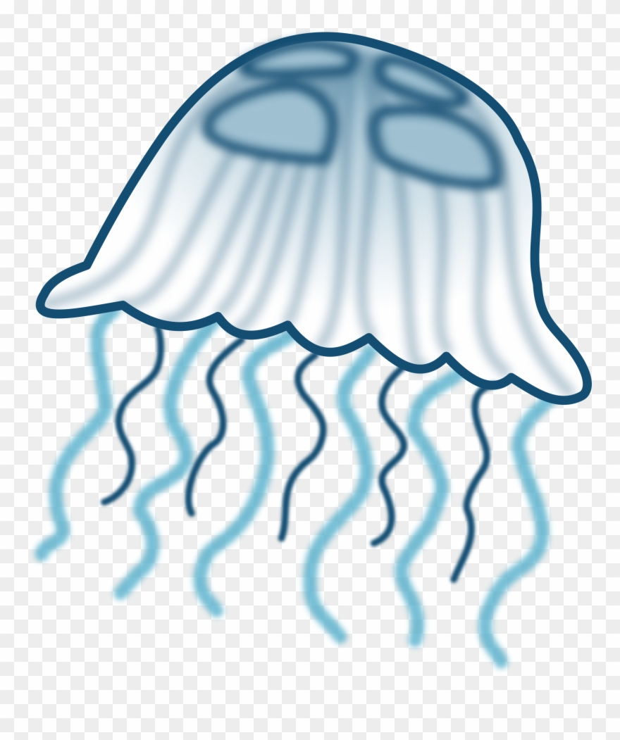 jellyfish # 5040956