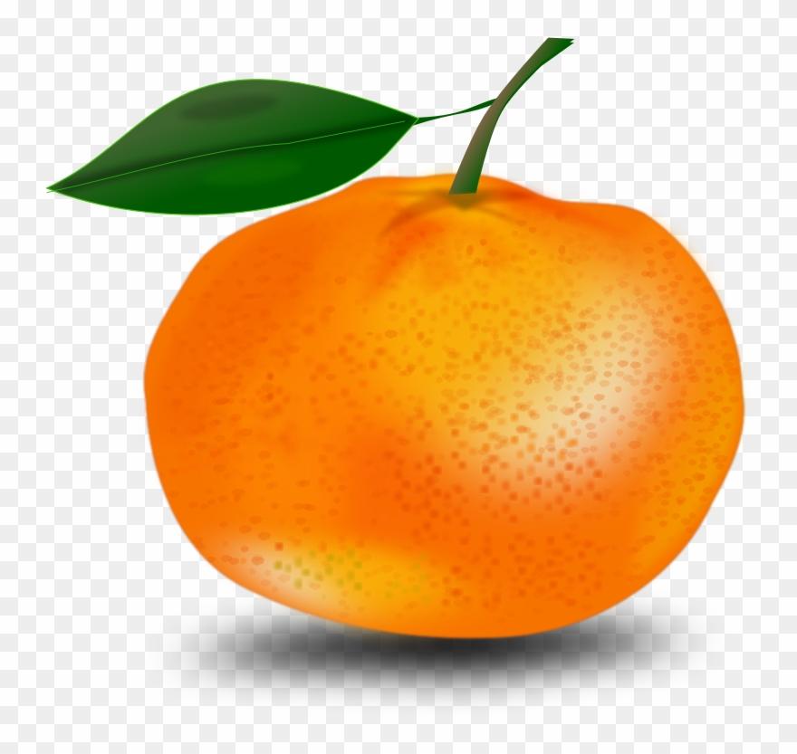 orange # 5004547