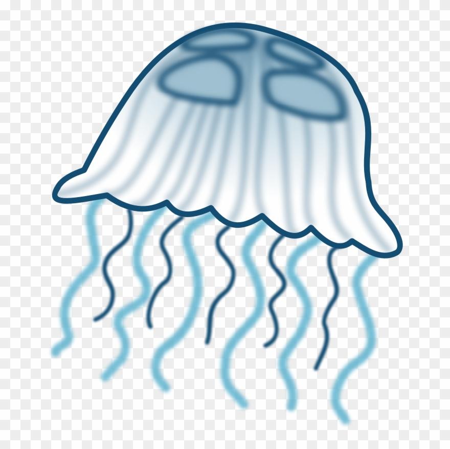 jellyfish # 5002171
