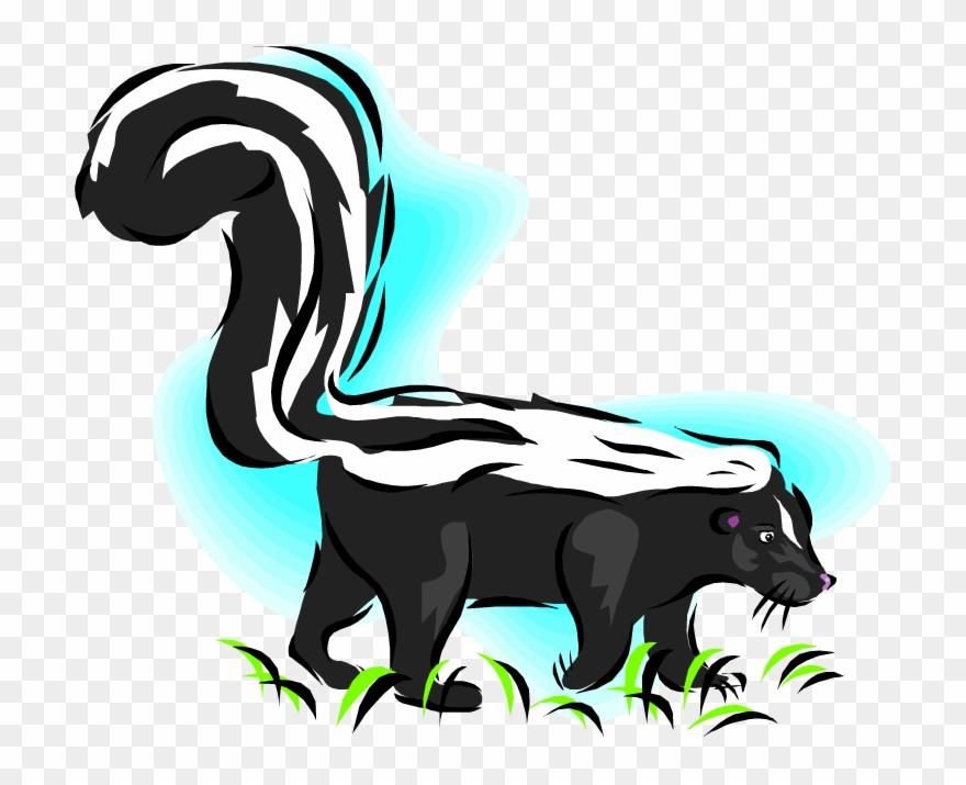 skunk # 5050551