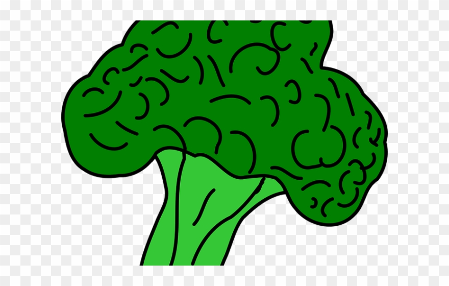 broccoli # 5055039