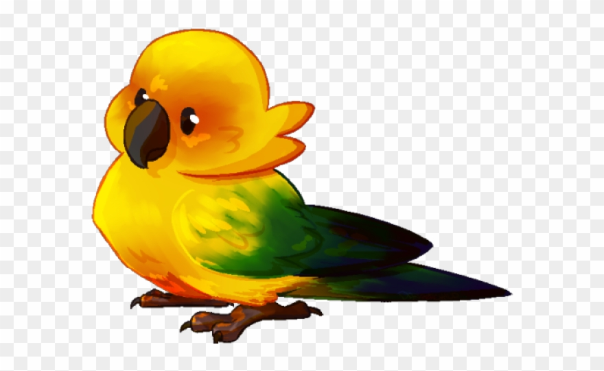 lovebird # 5072683