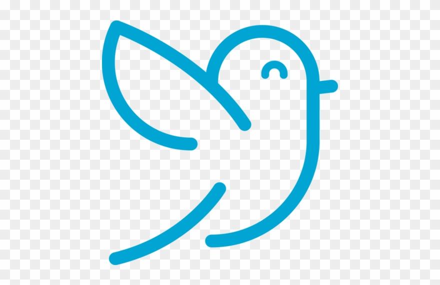 eastern-bluebird # 5092380