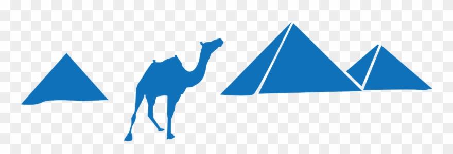 camel # 5077342
