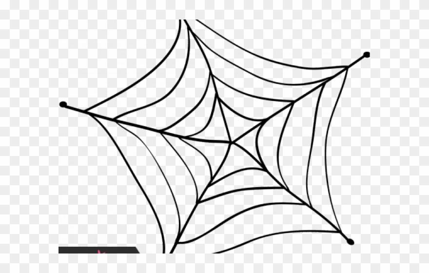 spider # 5220028