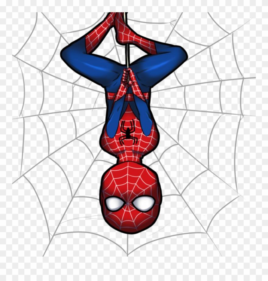spider # 5223094