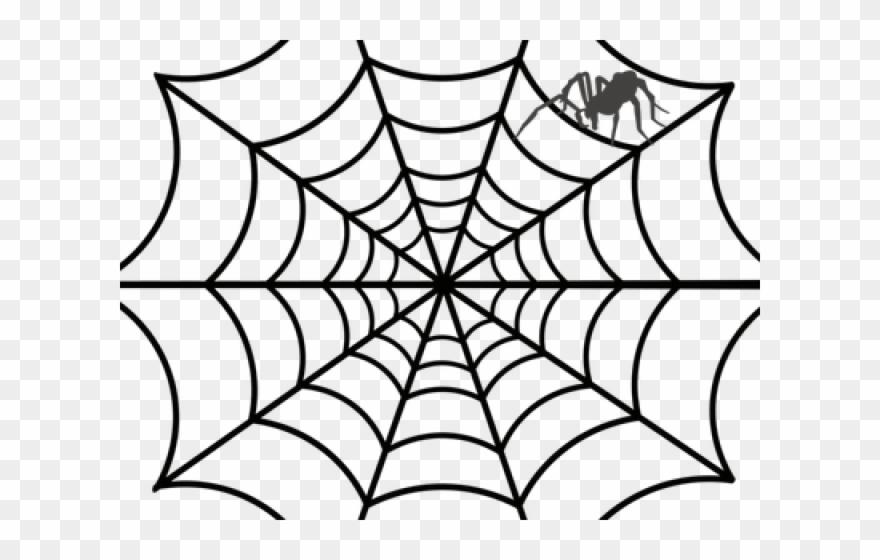 spider # 5222713