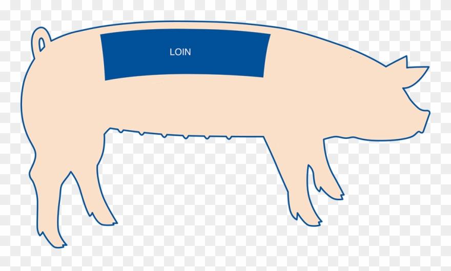 pig-roast # 5153637