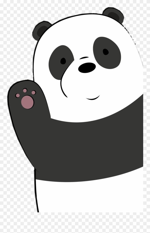 red-panda # 5208739