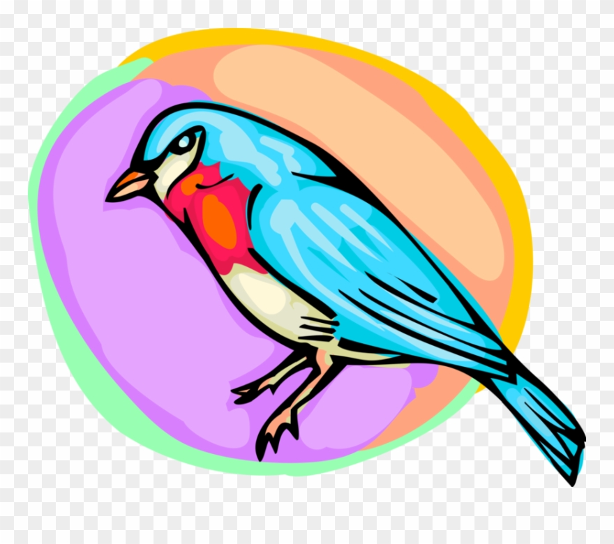 eastern-bluebird # 5225168