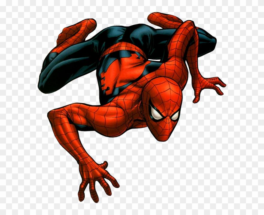 spider # 5228240